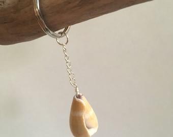 Seashell Accessories… Mermaid Treasures Beach Shell Keychain (1650)