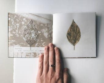 Beautiful, Plant Related Words Zine