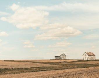 White Barn Landscape, Farmhouse Chic Decor, Rustic Country Home Wall Decor, Barn Art, Farm Print   'Two Friends'