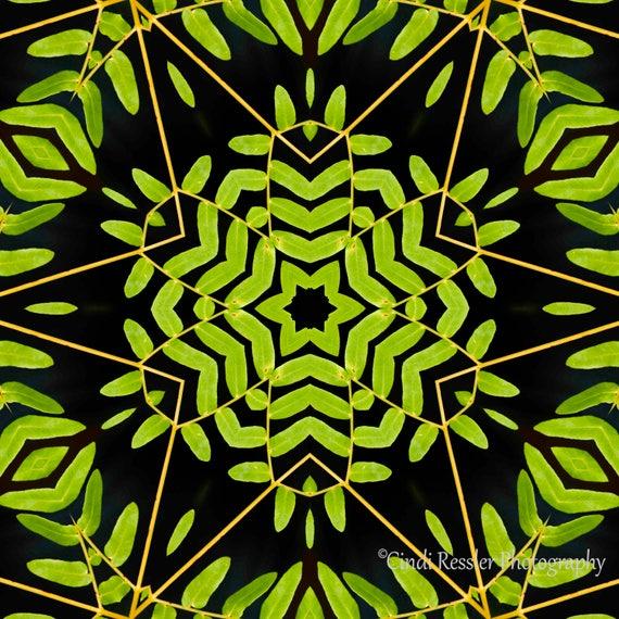 Green Leaves Kaleidoscope, Photo Art, Digital Photography, Wall Art, Nature, Photography