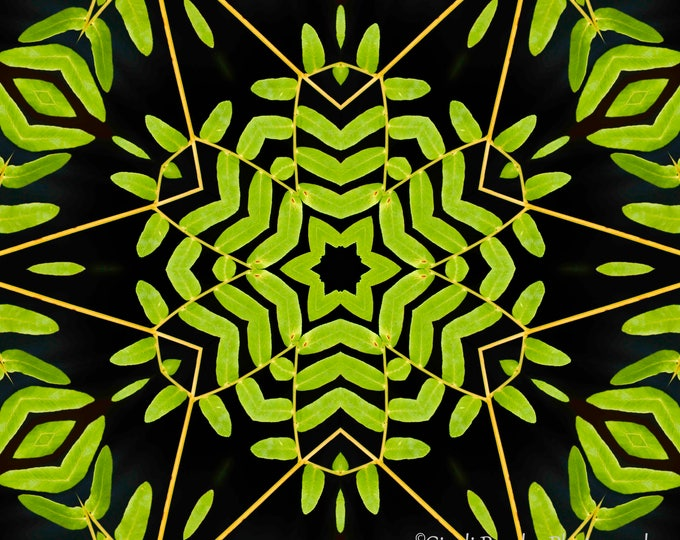 Green Leaves Kaleidoscope, Photo Art, Digital Photography, Wall Art, Nature, Photography