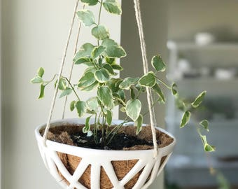 FREE SHIPPING - XX Hanging Planter