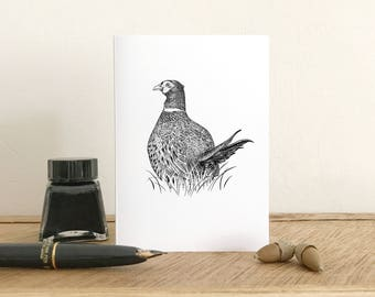 Pheasant greeting card - Blank Card - Fine Art Giclee Card - Birthday card - Thank you card - Small note card
