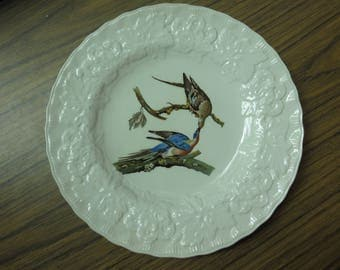 Alfred Meakin England Birds Of America Passenger Pigeon Plate