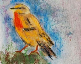 watercolor bird 40 authentic Drouot model listed artist original watercolor bird