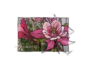 Pink Columbine, Doodled Photo,