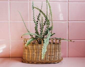 Vintage Wicker Planter Basket