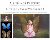20 High Res Fine Art Digital Png BUTTERFLY FAIRY WING Overlays Set 1