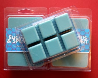 Eucalyptus and Spearmint - Scented Soy Wax Melt - Breakaway Clamshell - Home Fragrance  - Clean Fragrance - Scented wax cubes