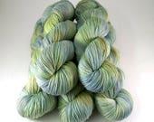 Smoothie Sock merino nylon hand dyed yarn 'Fortune'