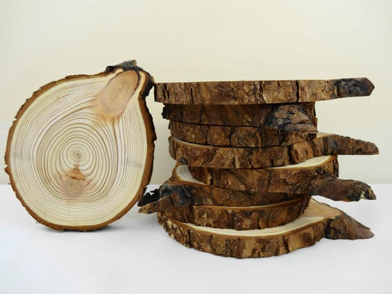 5 5 7 wood slices tree slices wood woodworking tree for Wood trunk slices