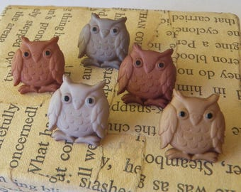 5 Owl Buttons A Parliament of Owls Plastic Shades of Brown
