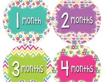 Monthly Baby Stickers Baby Month Stickers Baby Girl Month Stickers Monthly Photo Stickers Monthly Milestone Stickers 403