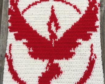 Team Valor Banner