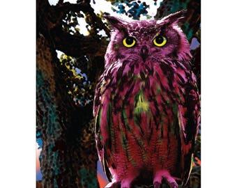 Ruby Owl, Vs. 2, 24 x 30 Art print