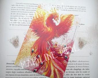 Map postcard Phoenix Firebird