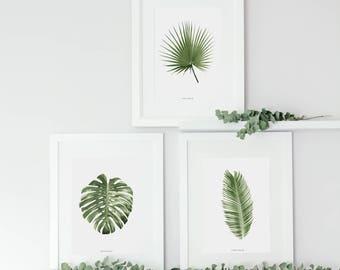 Tropical Leaf Prints, Botanical Home Decor, Wall Art, Monstera Leaf Print, Banana Leaf Print, Palm Leaf Print, Crazy Plant Lady, A4, A3