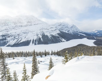 Winter on Peyto Lake