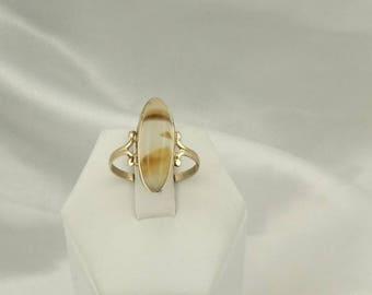 Lovely Pattern Montana Agate 10K Gold Ring  #AGATE-GR1