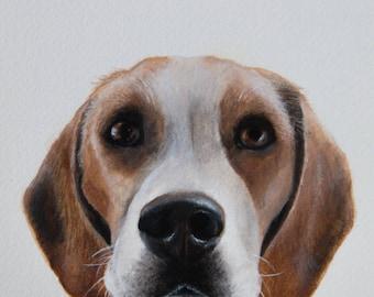Custom Pet Portrait, Hand Painted Pet Painting, Dog Portrait, Cat Portrait, Custom Pet Painting
