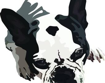 Custom Pet Portrait, Digital Pet Portrait, Digital Pet Illustration, your pet illustrated, digital pet drawing