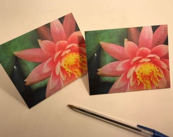 Note card ~ Water Lily Love