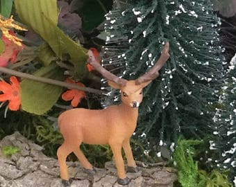 Miniature Elk / Stag