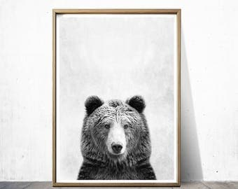 Bear Print Bear Poster Wall Art Print Animal Print Bear Art