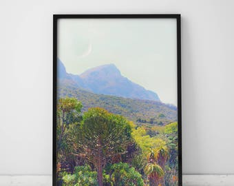 Nature Photography Prints Nature Prints Cactus Print Nature Wall Art Prints Mountain Art Mountain Photography Nature Art Mountain Print