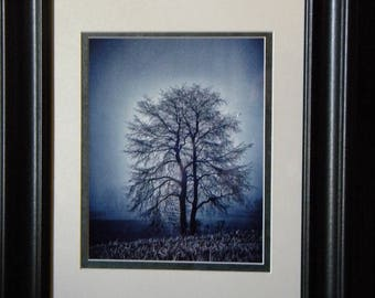 Moonlit Harvest:  Individually numbered artist's print. Matted & framed original photography from PatriciaDawnDesigns