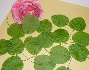 Vintage Millinery Supplies Green Leaves Wired Stems Greenery Floral Supplies