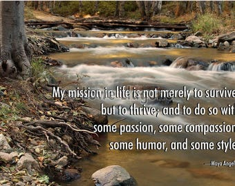Inspirational quote poster. Photograph of a mountain stream in the San Bernardino Mountains of Southern California.