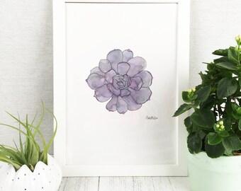 Succulent Art Print / Wall Art / Botanical Print / Plant Print / Wall Prints / Botanical Art / Cactus Print