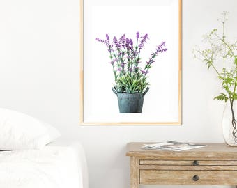 Botanical Lavender Print - Botanical Wall Art Print - Botanical Wall Art - Purple - White Wall - Fine Art Photography - Neutral Wall Decor