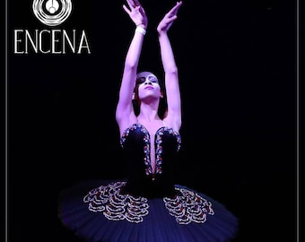 Black Swan professional Ballet Tutu