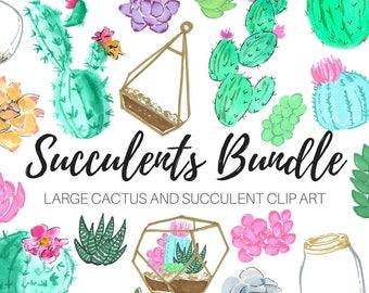 Watercolor clip art - Succulent clip art - Floral Clip Art - Terrarium Clip Art - Cactus Clip Art - Commercial use