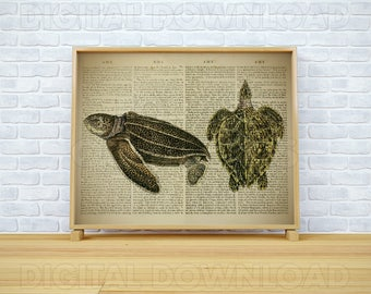 "Dictionary page art, Sea turtle print, Reptile decor, Vintage dictionary, Sea animals print, Printable wall art, Love turtle print, 16x20"""