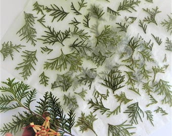 Tree handmade paper, Christmas wrapping paper, green tree paper, Christmas gift paper, Christmas gift wrap idea, nature paper