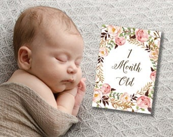Baby Month Cards, Milestone Cards, Baby Growth Cards, Girl Milestone Prints, Floral Baby Signs, Monthly Milestone Cards, Printable Milestone