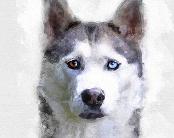 Custom pet portraits, pet painting, pet illustration, pet drawing, pet custom drawing, pet watercolor, custom pet drawing, pet wall art