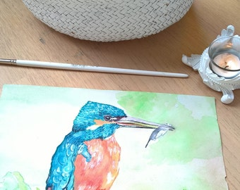 IJsvogel / Kingfisher