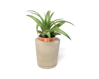 Concrete and copper planter, air plant, or candle holder