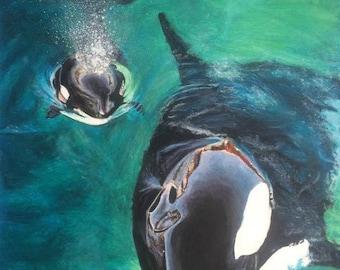 """Orcas - """"A4"""""""