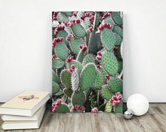 succulent print , cactus print ,botanical print ,  cactus wall art  , cactus printable art ,cactus photography  , cactus wall art