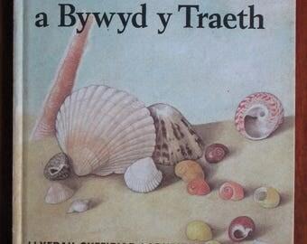 Vintage Ladybird Book in Welsh - Y Traeth a Bywyd y Traeth by Nancy Scott