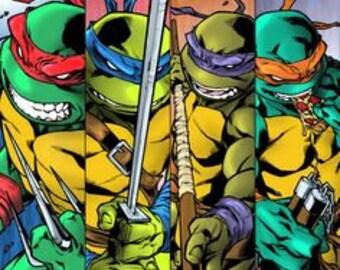 Ninja Turtles collage
