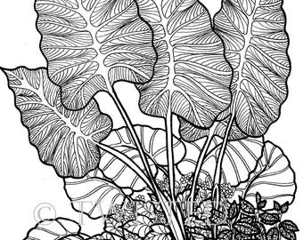 Instant Download - Adult Coloring Page - Tropical Foliage Printable