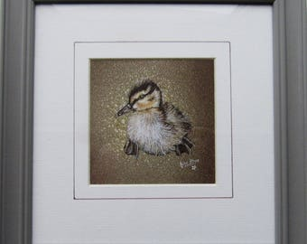 Derbyshire Duckling