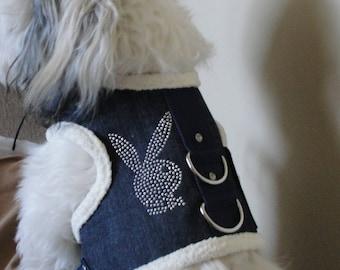 Dog harness beautiful designs