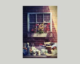 Fine Art Photo Print Garage Sale Junk and Old Wood Window Frame Planter on Brick Wall, Urban Life Rural Yard Sale Still Life Photography
